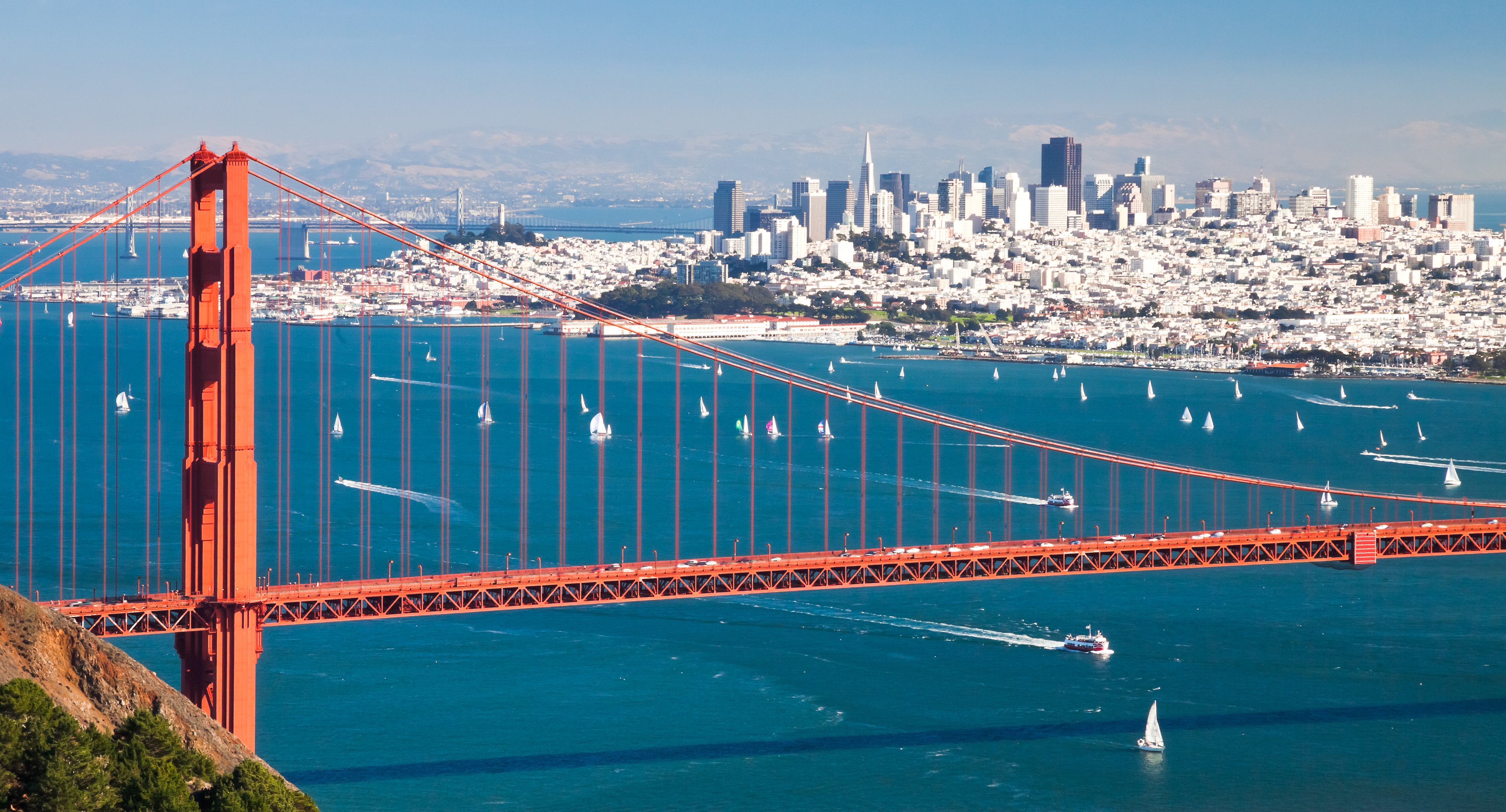 Choosing A Virtual Office Solution In The Bay Area | 580 Executive Center